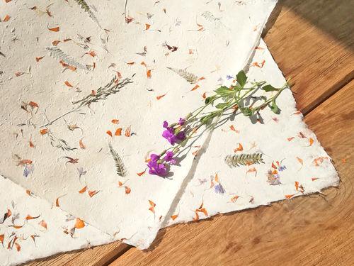 Papiere Mit Echten Blüten Blättern Und Gräsern